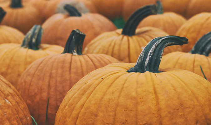 Halloween by the numbers (Infographic) | Domo